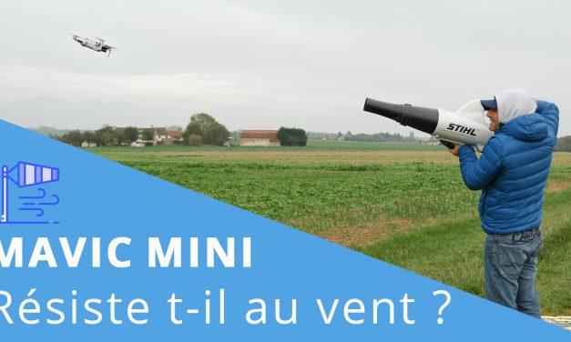 DJI Mavic MINI : Test de résistance au vent.